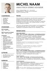 CV ontwerp Michel